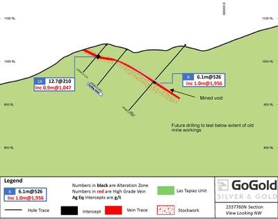 Figure 2: Cross Section LRGM-21-006 & LRGM-21-014 (CNW Group/GoGold Resources Inc.)